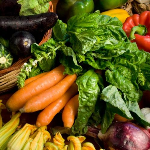 ortaggi-verdure-la-petrosa